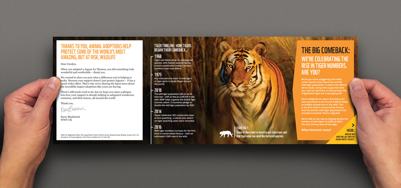 WWF - Animal adoption journey and strategy