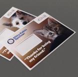 Battersea Dogs & Cats Home - Sponsorship welcome pack