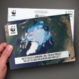 WWF - Supporter Retention & Engagement Cash Appeal